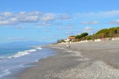Strand2